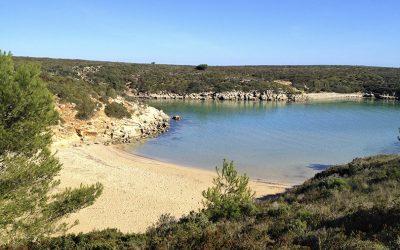 Crique Pudent et plage D'en Tusqueta